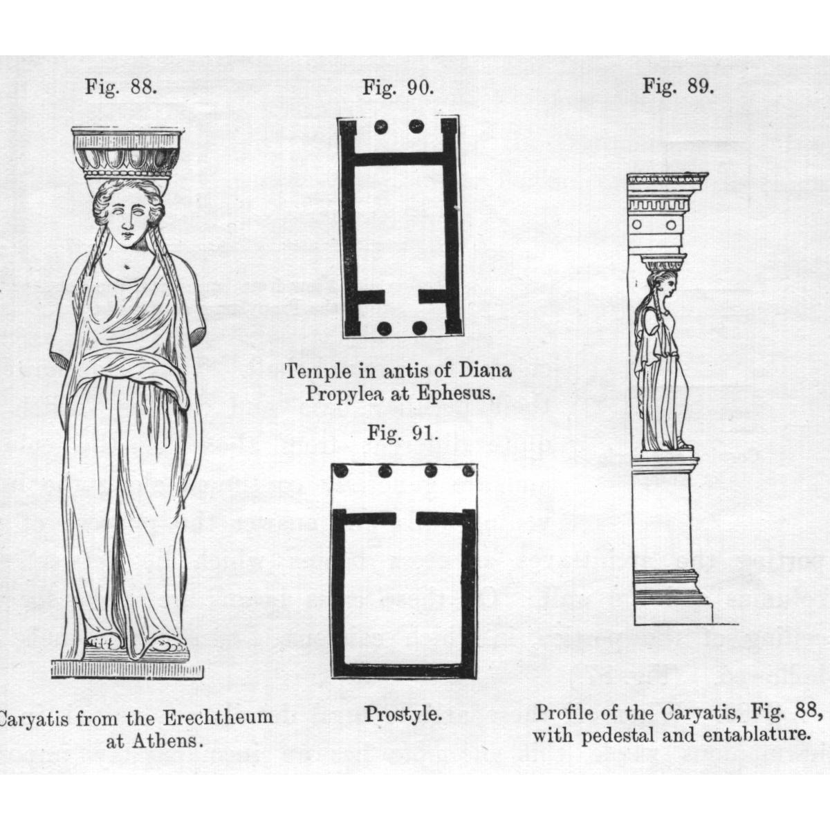 An architectural rendering featuring a caryatid that inspired the four porches of statues on The Field Museum.