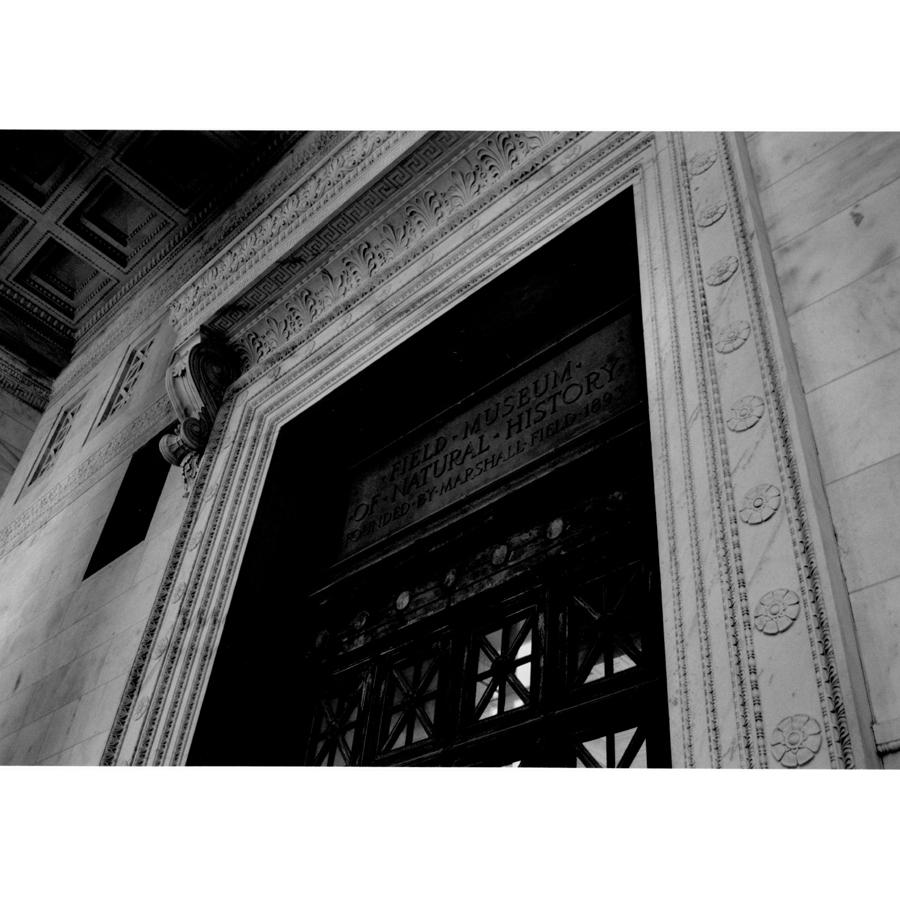 Architectural detail around an entryway at The Field Museum, featuring ornamental mouldings and cornice.