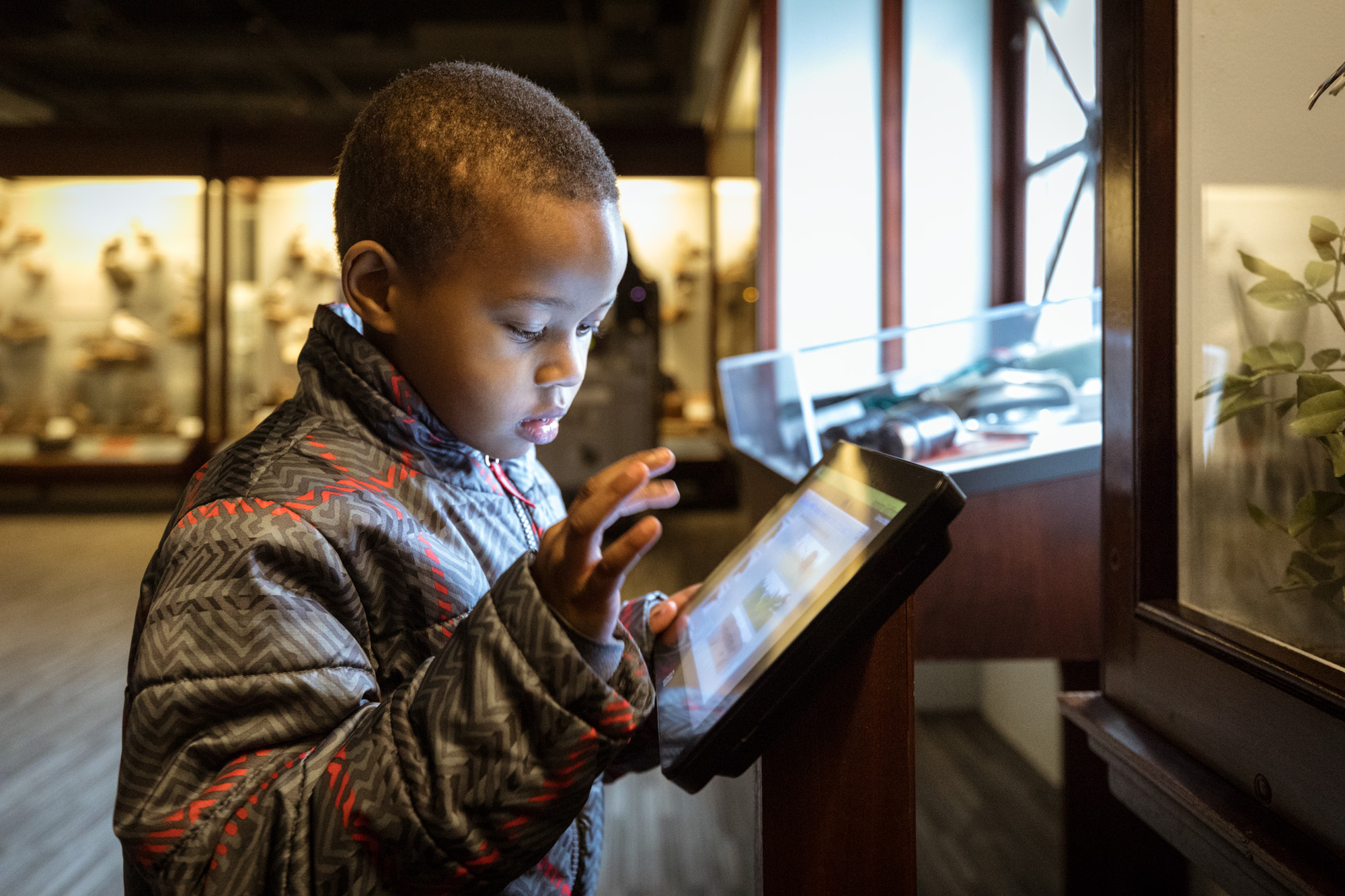 A young boy is touching an interactive display screen that is in front of a diorama, which has only plants visible. The light from the screen illuminates his face.