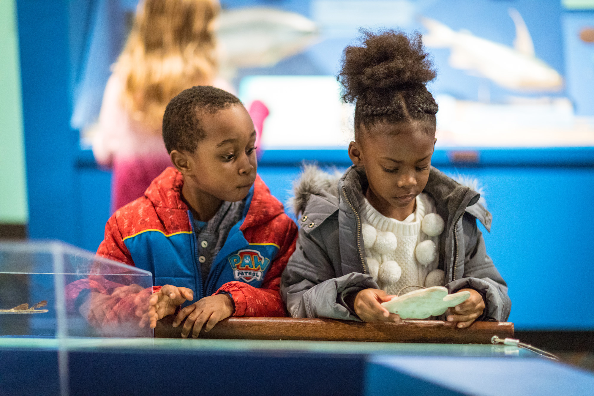 Two children play with objects in an exhibition. A young girl on the right inspects the replica fossil that she holds with both of her hands. The young boy to her left looks over her shoulder to also wonder at the object.