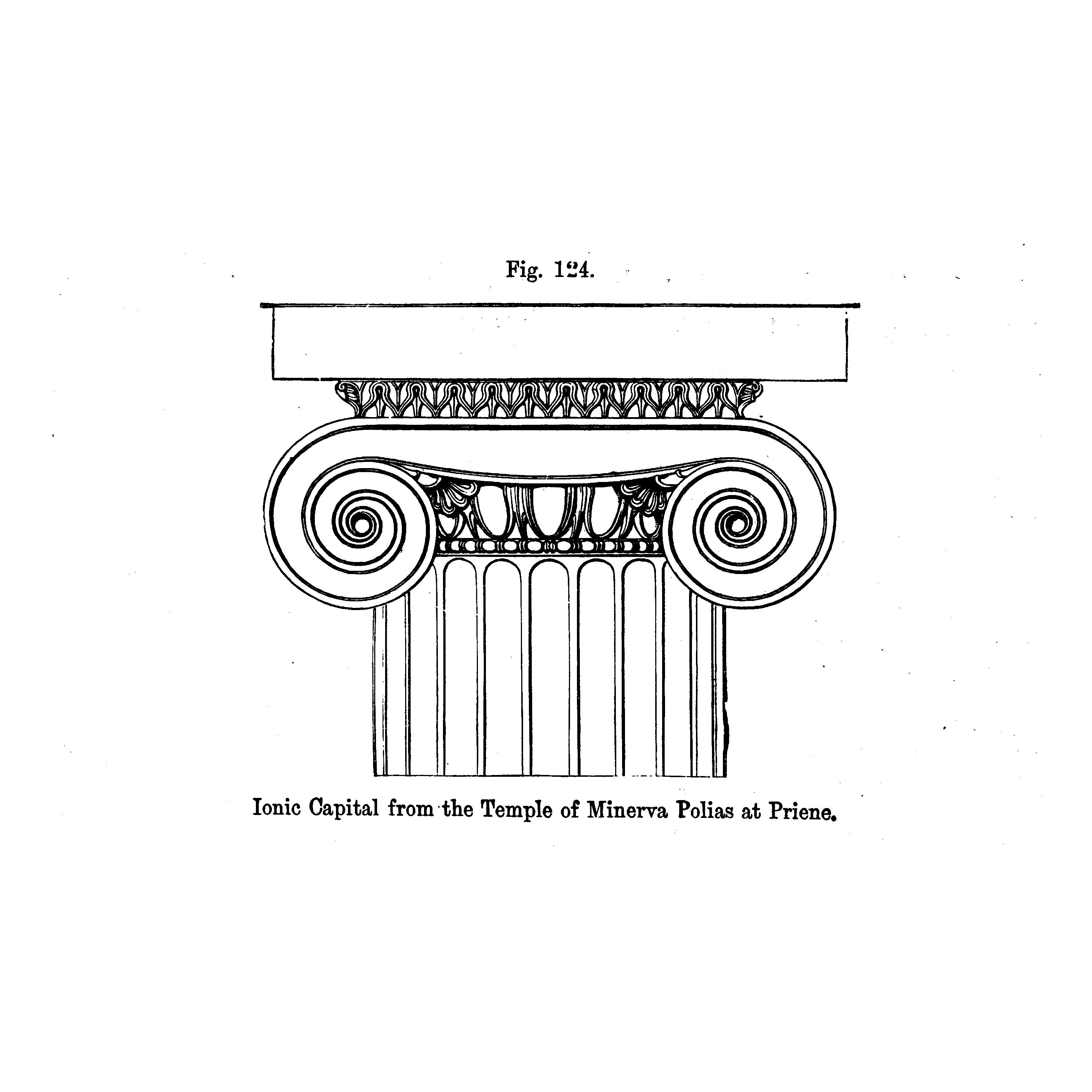 An architectural rendering of the top detail of an Ionic column, from A Handbook of Architectural Styles, 1809.