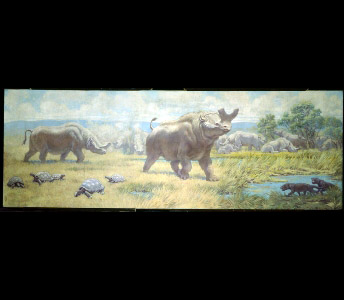 A herd of Brontotherium gather behind a large male who faces off with two flesh-eating Hyaenodon. A group of prehistoric tortoises dots the grassy foreground.
