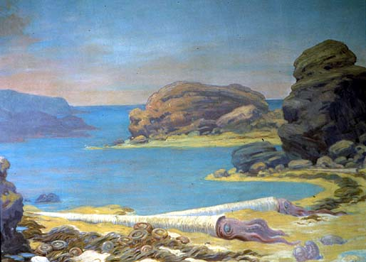 A depiction of Ordovician Sea Life, two billion years ago, shows beached seaweeds, trilobites and cephalopods from the ocean on a rocky shore.