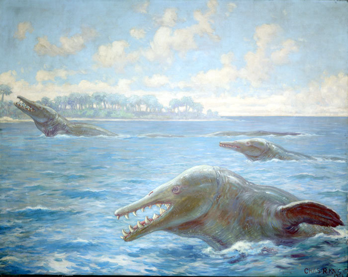 In this Charles Knight mural, three basilosauruses swim at the surface of the sea.