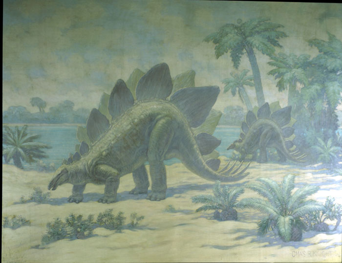 Two stegosauruses walk near a water source, with palm trees and ferns dotting their surroundings.