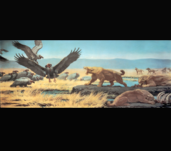 A Charles Knight mural of a prehistoric scene at the Rancho La Brea tar pits, in which saber-toothed cats defend their prey against scavenging, vulture-like birds with prehistoric horses in the background.