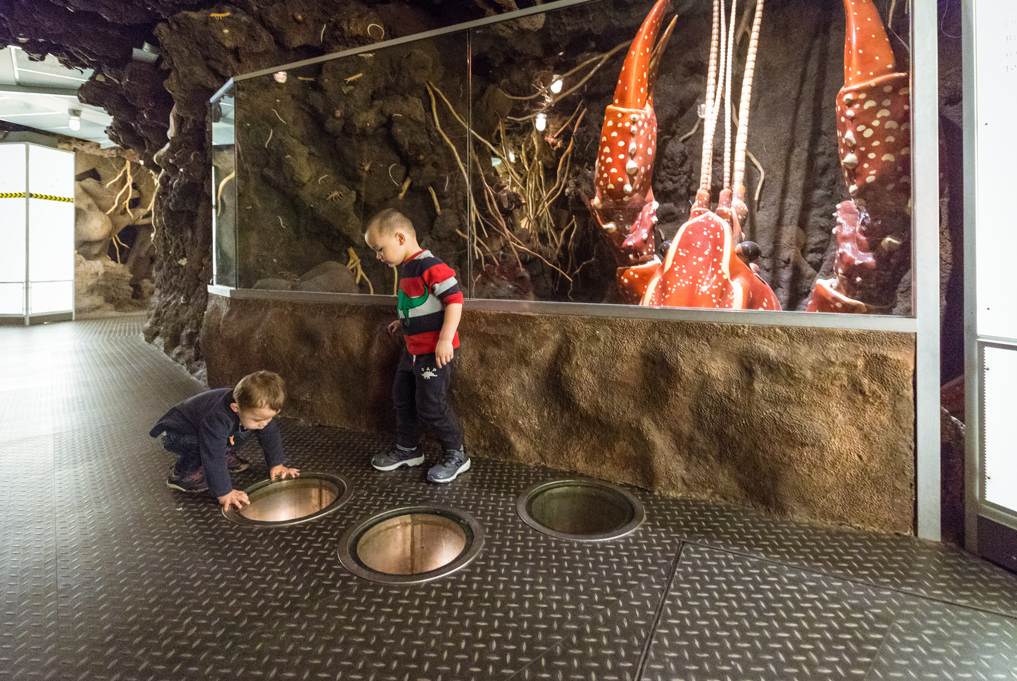Two boys stand in front of a reproduction of a crayfish more than twice their size. The boy to the left crouches, looking down into a window cut in floor. Recreated soil and roots are visible behind them.