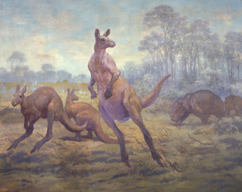 Three prehistoric kangaroos, two hopping forward over a grassy field, one looking back towards two giant prehistoric wombats. Tall trees fill the distance.