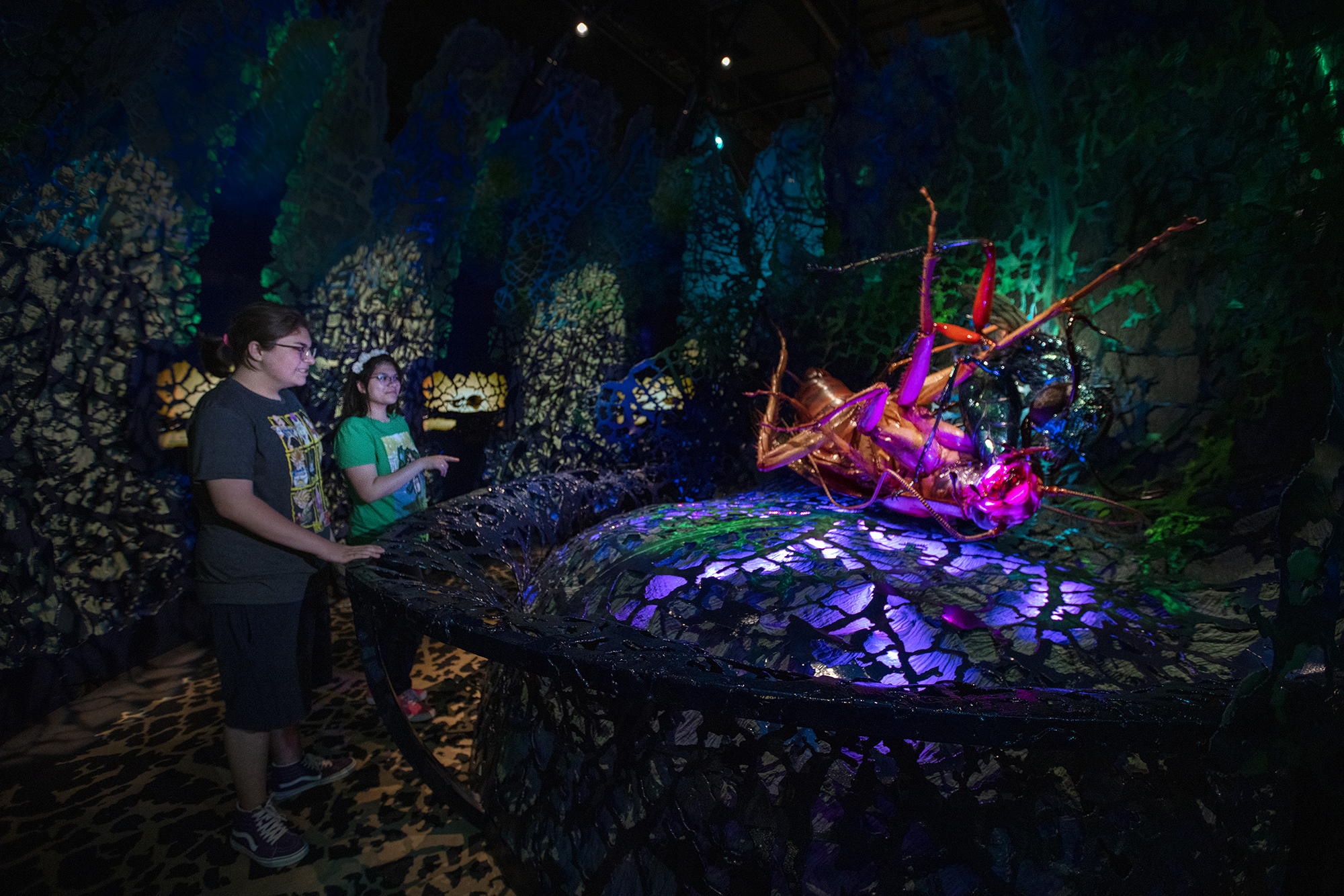 Two people observe a large, illuminate model of two insects battling each other. The lighting is mysterious, with purple, pink, and green lights. A latticed wall surrounds the whole display.
