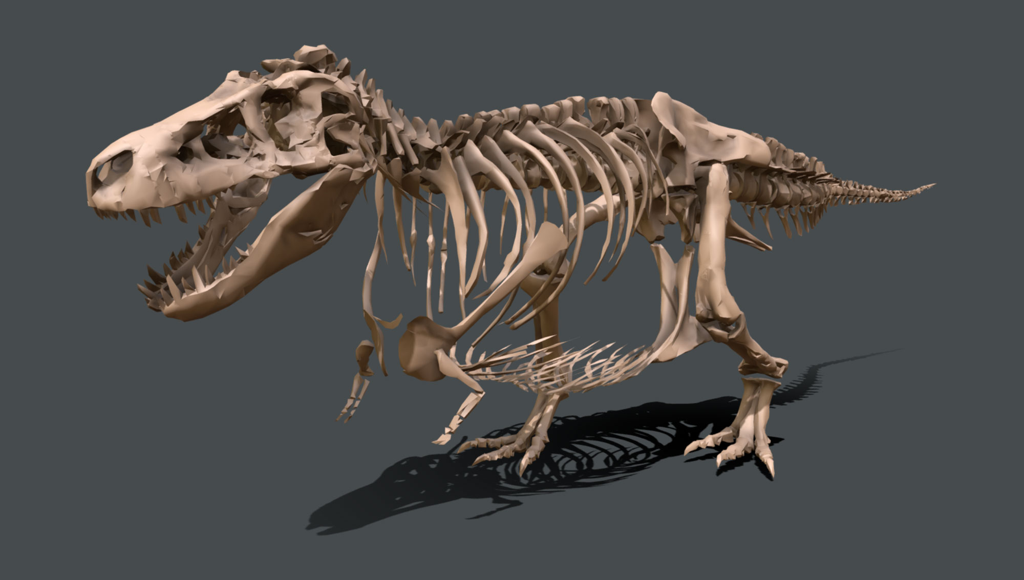 Computer graphic of SUE the T. rex skeleton.
