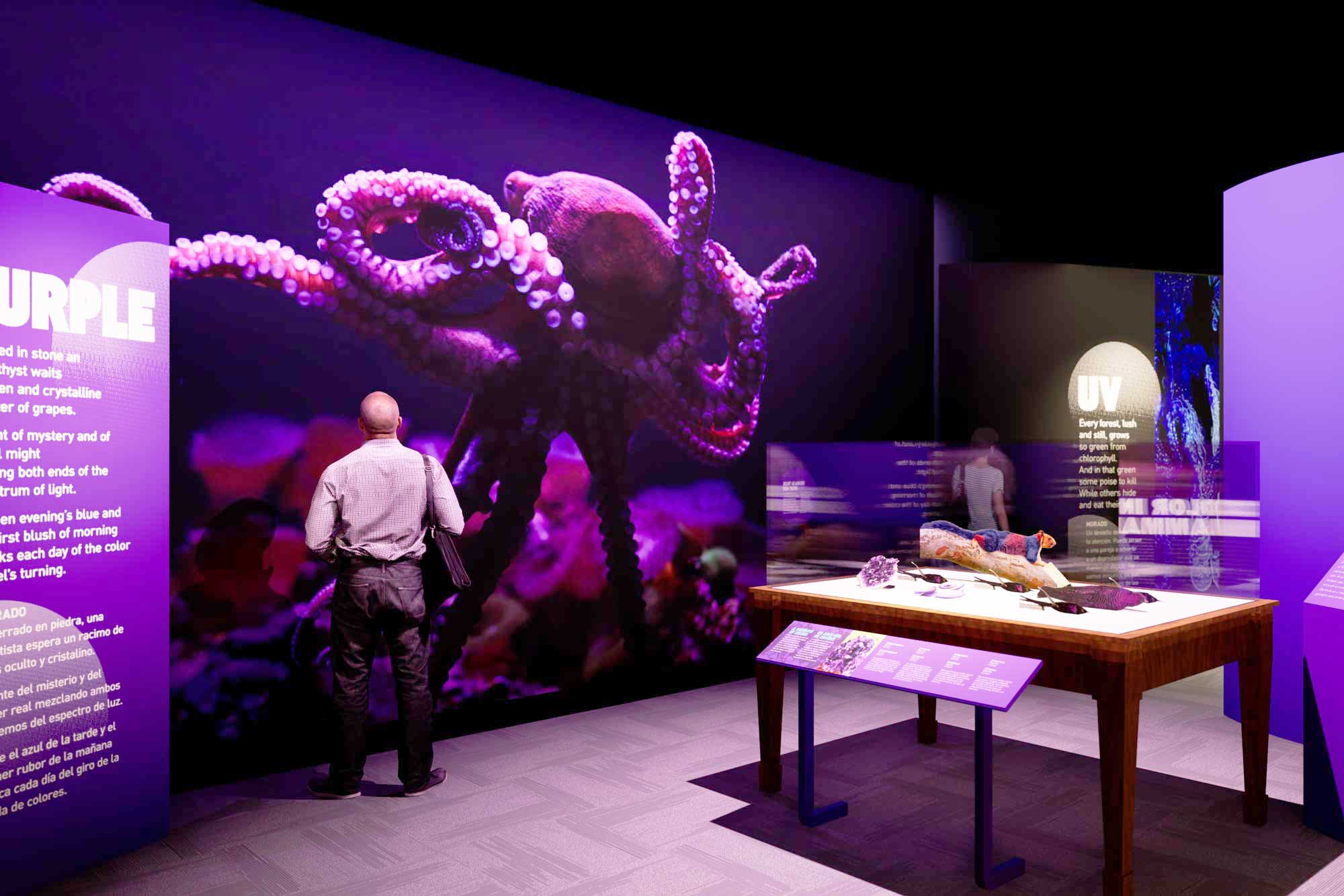 Rendering of a purple gallery in an exhibition. The far wall features a large-scale mural of a purple octopus.