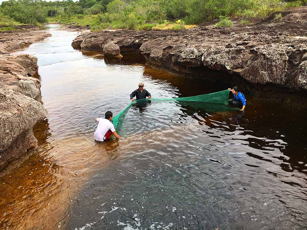 Three people hold a large green net across a shallow part of a river