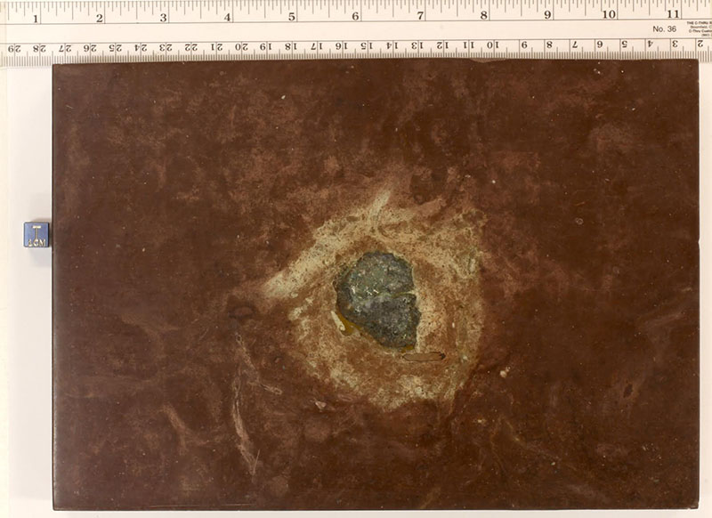 A flat stone slab that's reddish in color, with a green object in the center, surrounded by a tan-colored ring