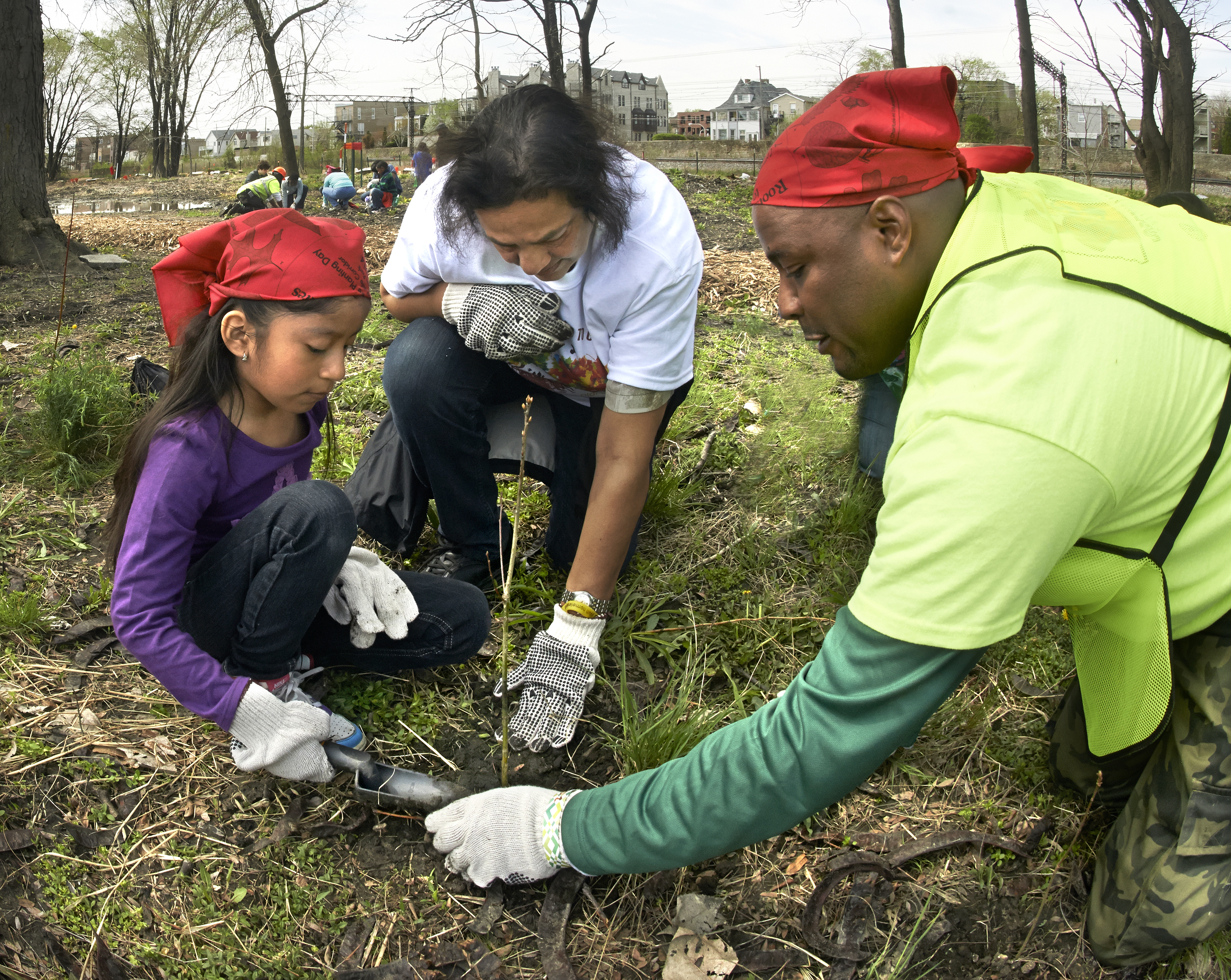 Two adults help a child plant a tree sapling in the ground.