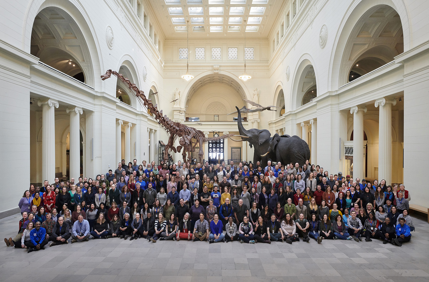 Field Museum staff pose for a group photo in Stanley Field Hall, standing in front of Maximo the Titanosaur and taxidermied African elephants.