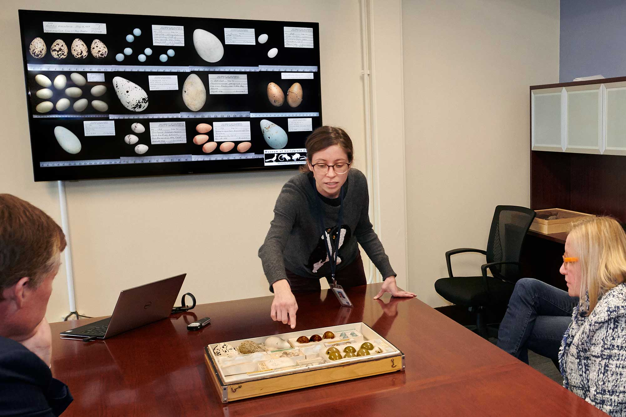 A woman points to egg specimens in a tray while two people look on.