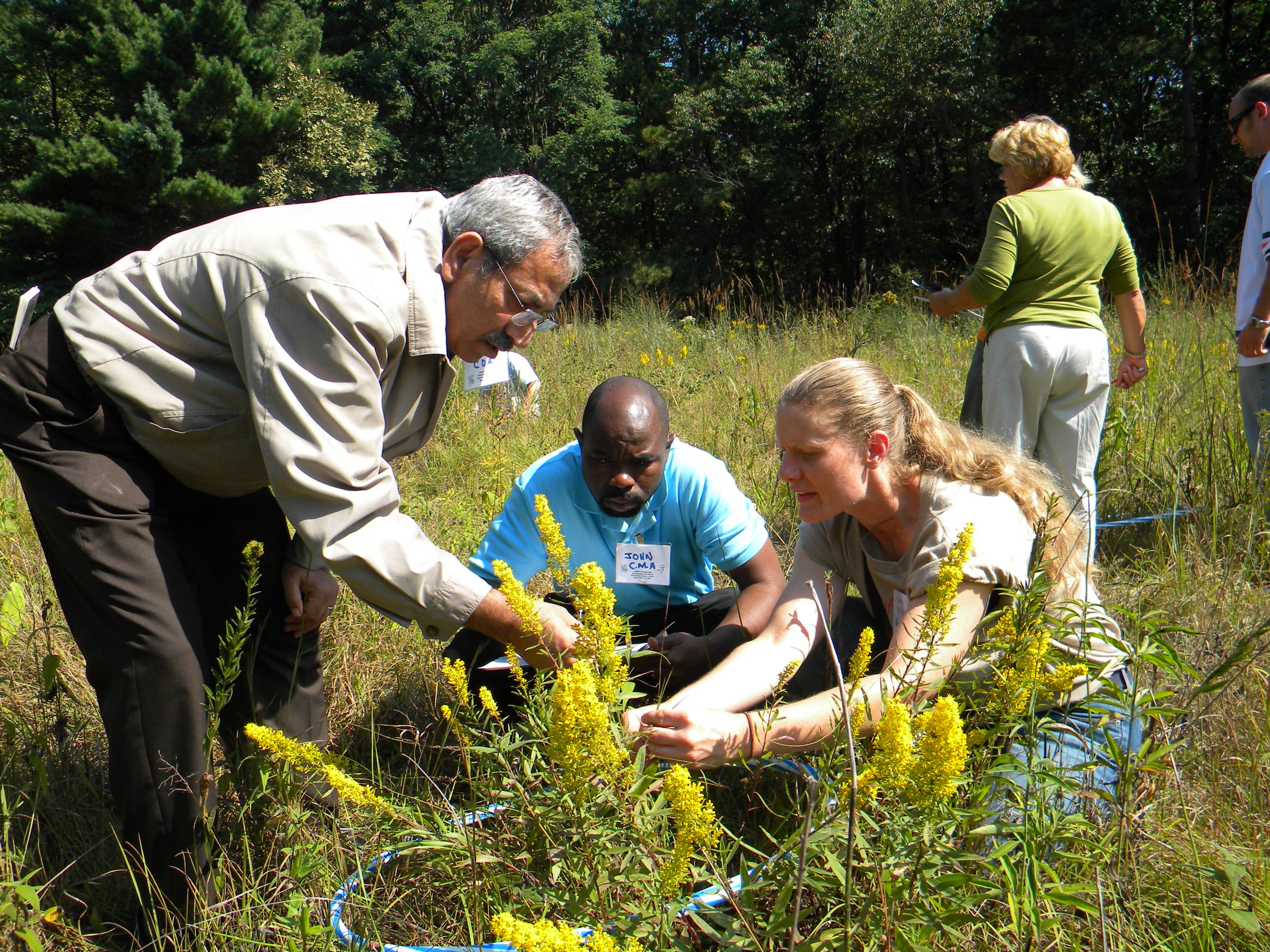Working together, three adults, two men and one woman, examine prairie plants together.