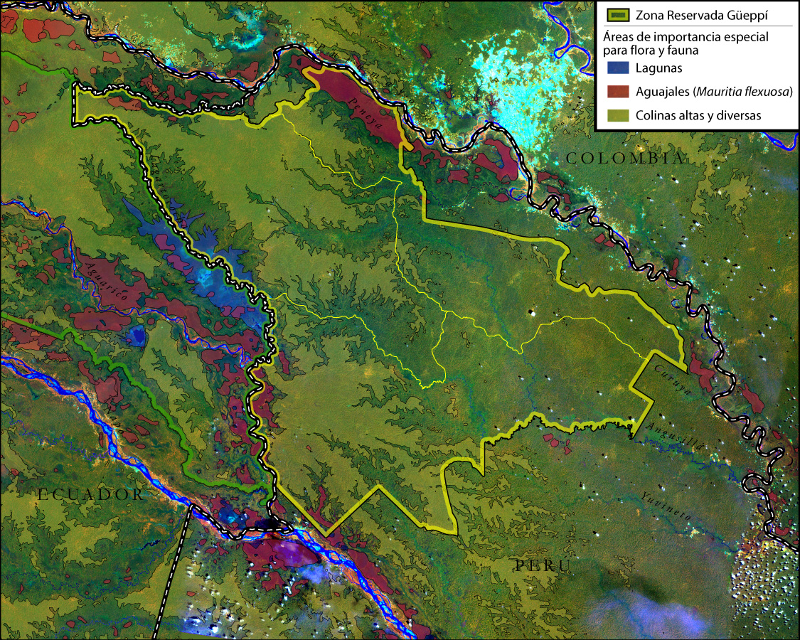 Biologically sensitive areas in the Zona Reservada Güeppí in northern Peru. Credit:  J. Markel.