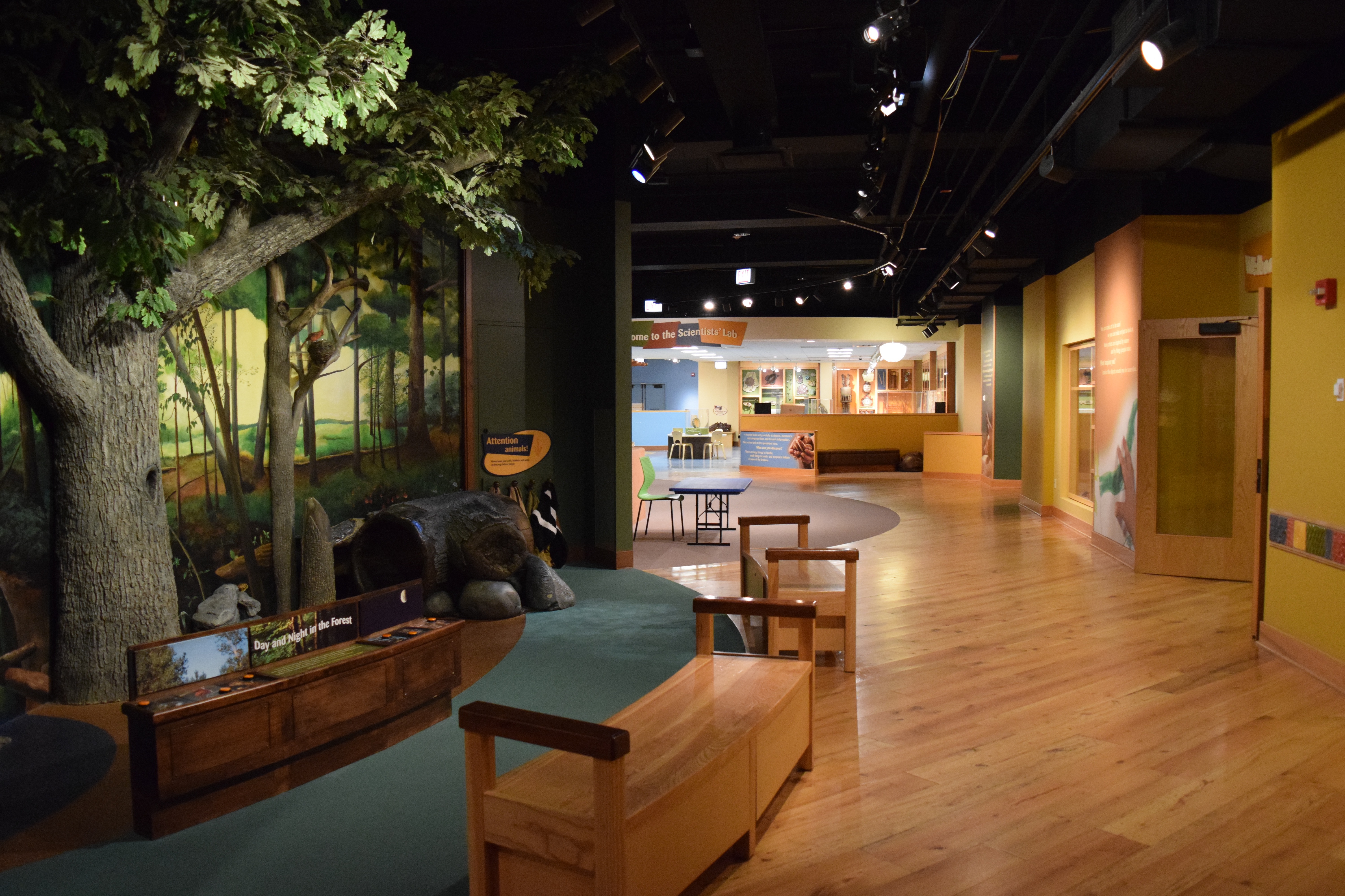 View of the Crown Family PlayLab.