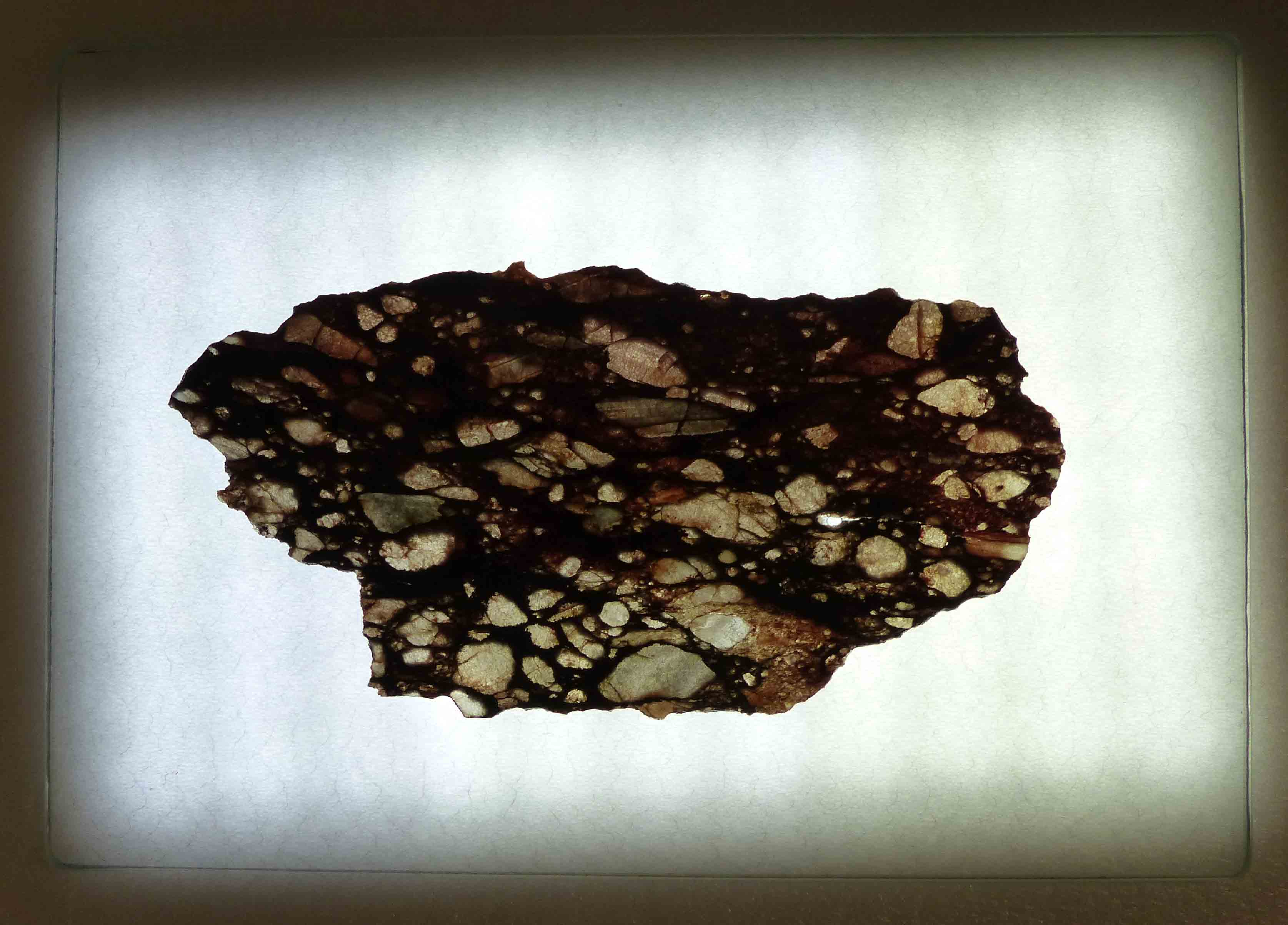 A cross-section of a black and brown rock with jagged edges, with brighter spots lit up by a light table