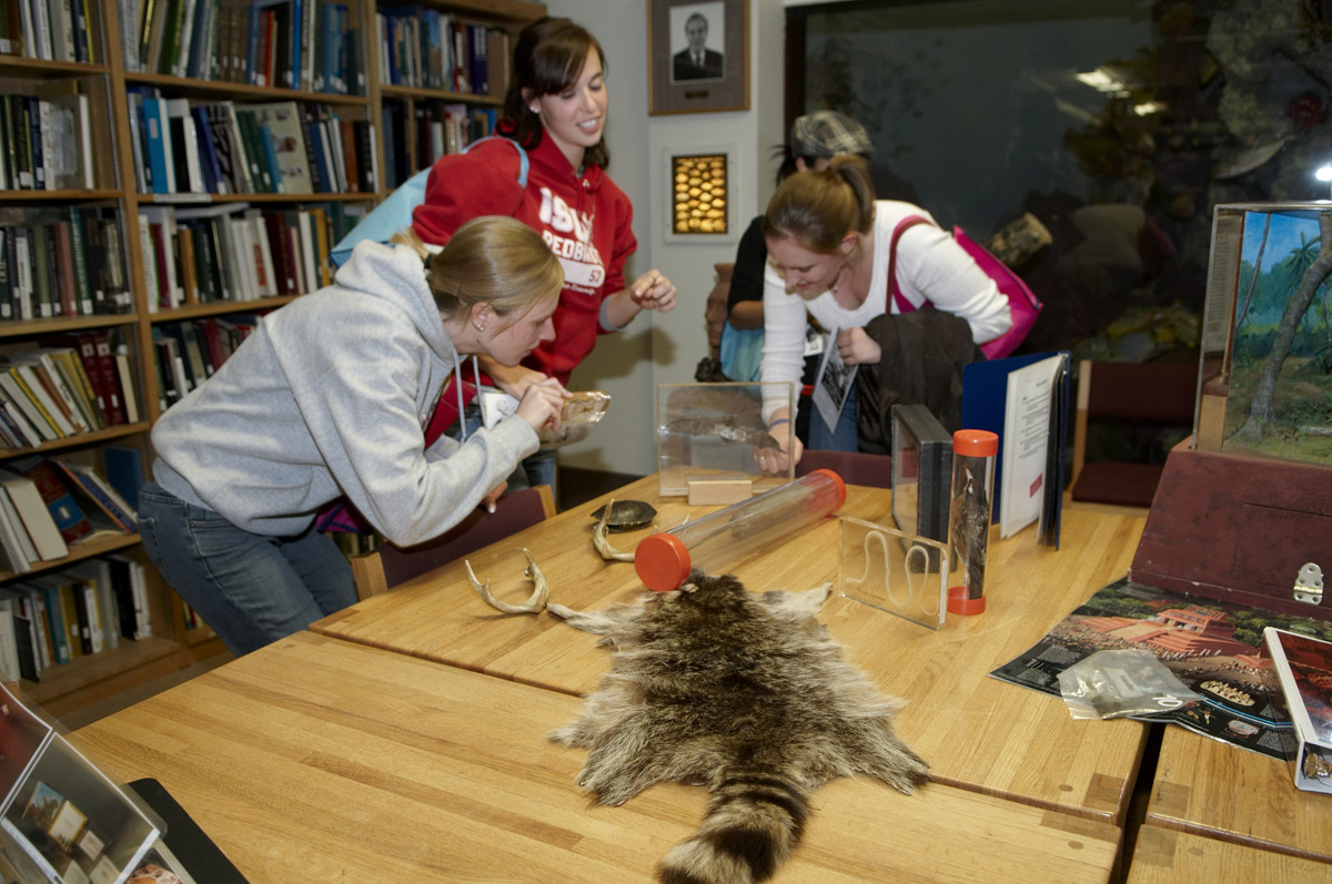 Three educators stand around a table with specimens, including a raccoon skin, bat, bird, and pair of antlers.