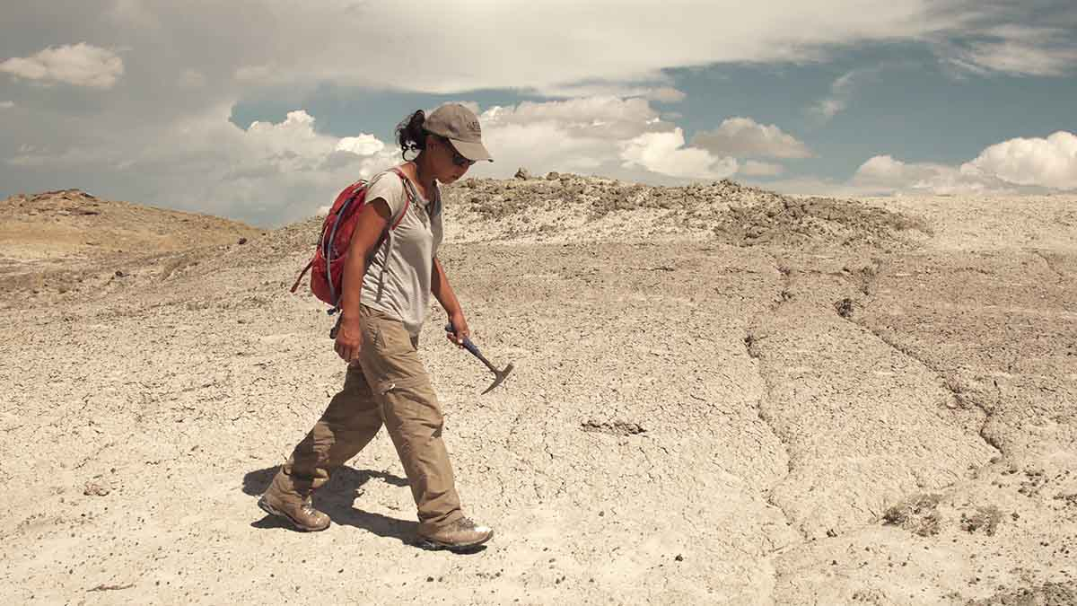 A woman with a hammer walking across the desert in front of a blue sky