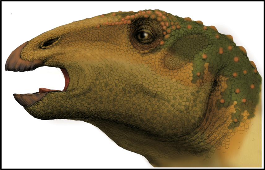 Illustration of the head of a large green and yellow lizard-like animal