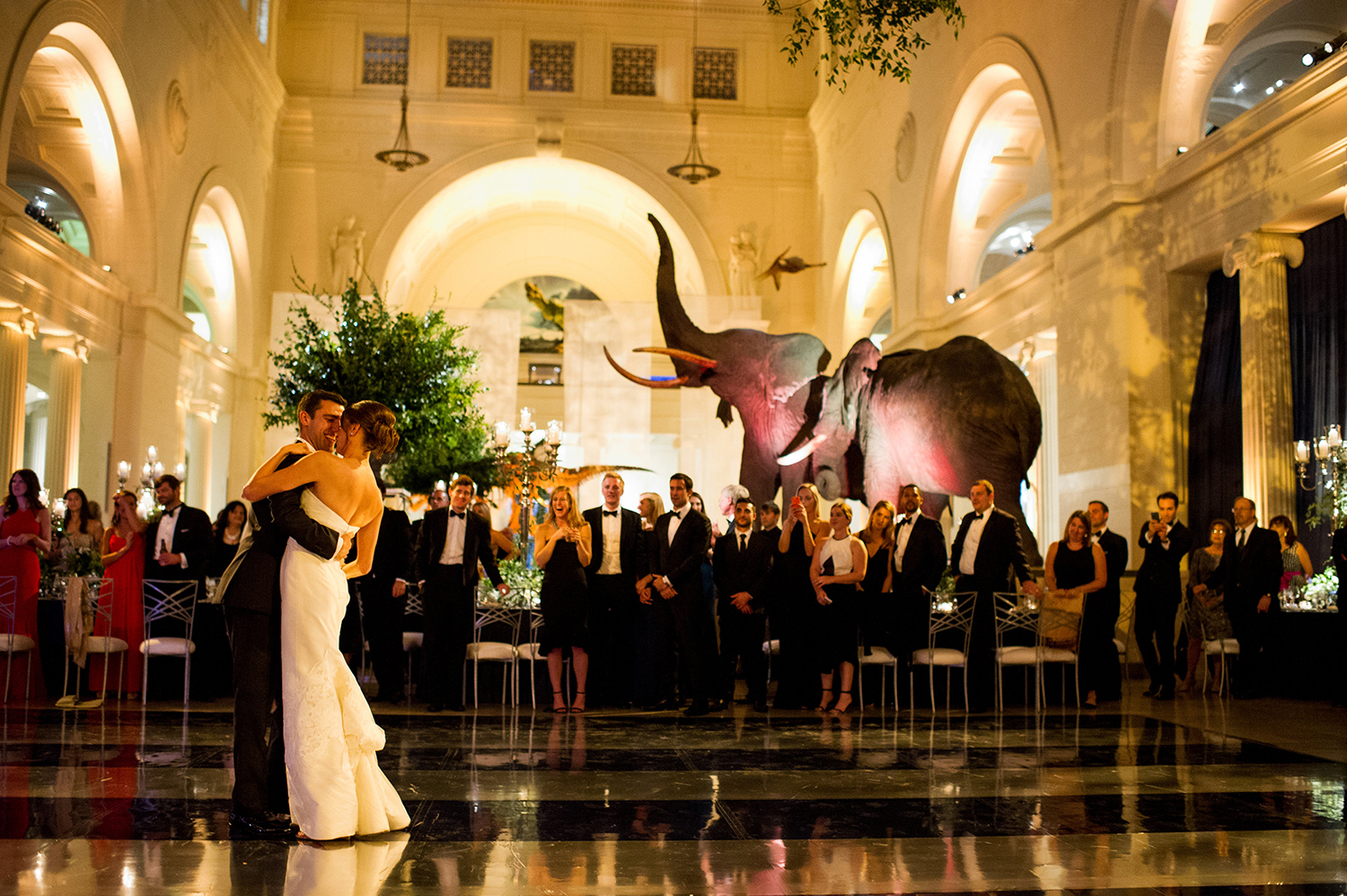 A couple shares their first dance in the center of Stanley Field Hall—with elephants visible in the background—as wedding guests stand and watch from the edge of the dance floor.