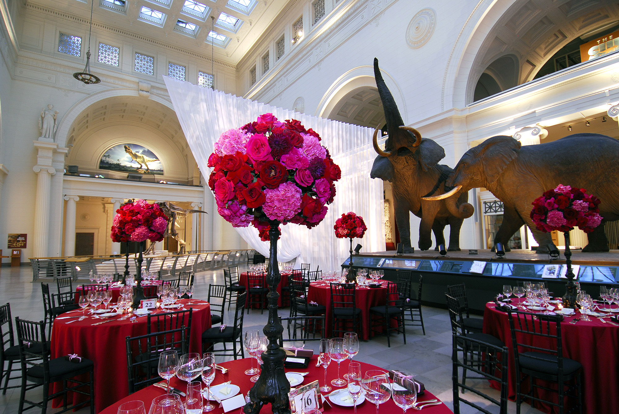 Circular tables covered with red table cloths and pink and red floral arrangements are set up in Stanley Field Hall. The taxidermied African elephants are visible beyond the tables.