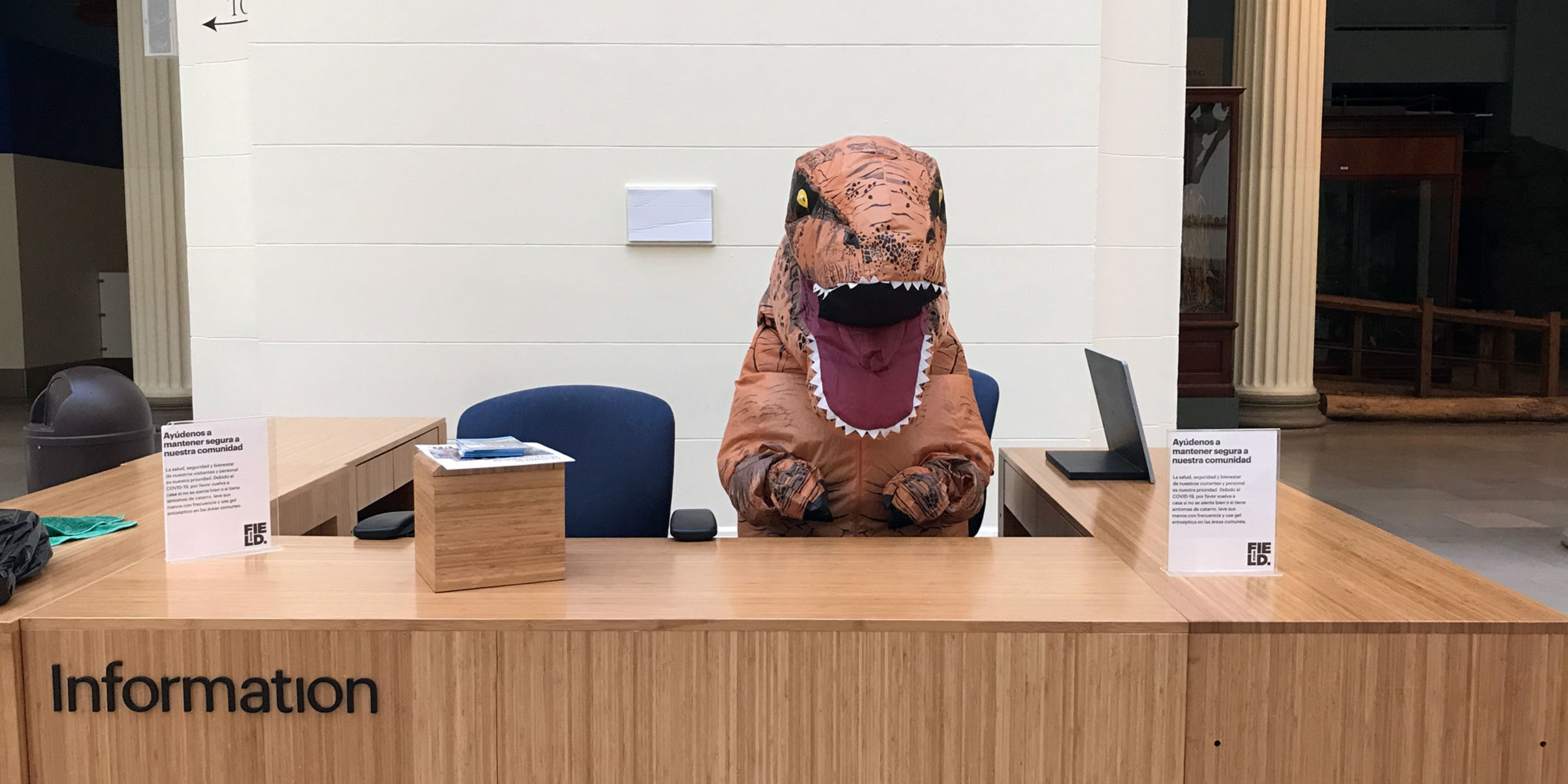 A person in an inflatable T. rex suit sits behind an information desk.