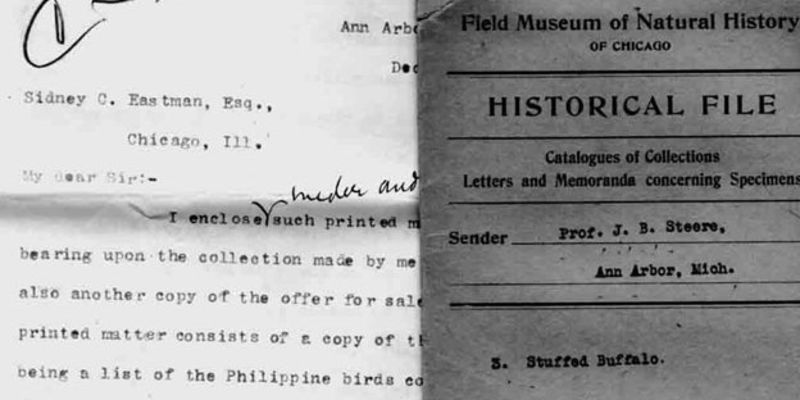 Historic documents from the Museum Archives