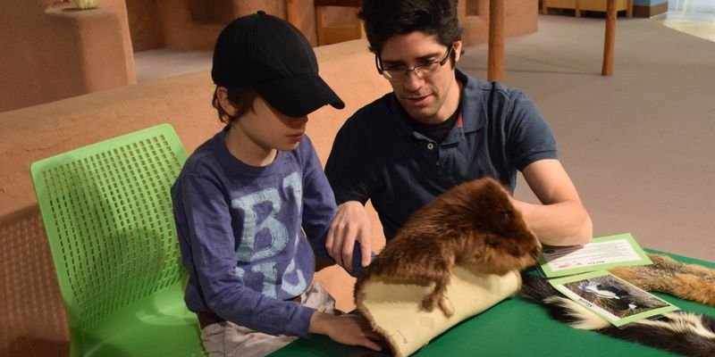 Father and child examining animal pelts in the PlayLab.