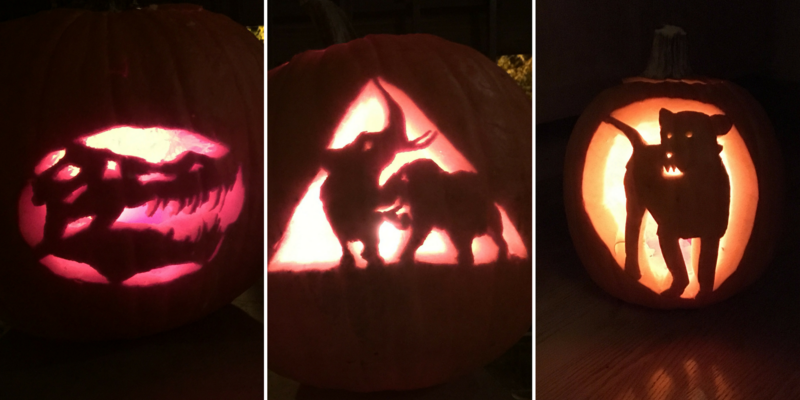 Three carved pumpkins: one with a dinosaur skull design, one with two elephants, and one with a lion.