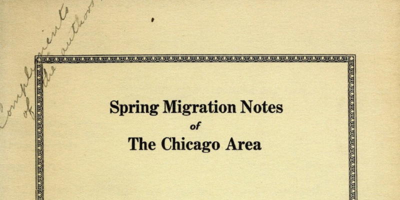 """Yellowed paper with black text that reads, """"Spring Migration Notes of the Chicago Area"""""""