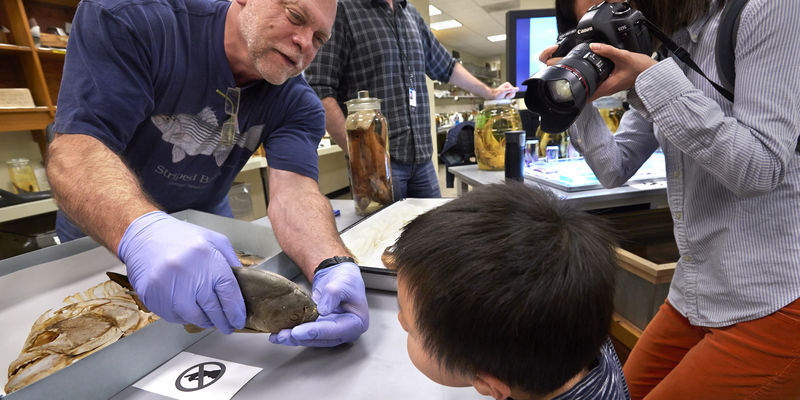 Field Museum staff member shows a fish specimen to a young boy, while the child's mother takes a picture.