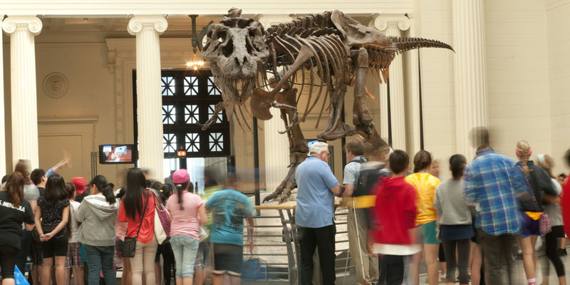 View of SUE the T.rex, with visitors in motion in the foreground.