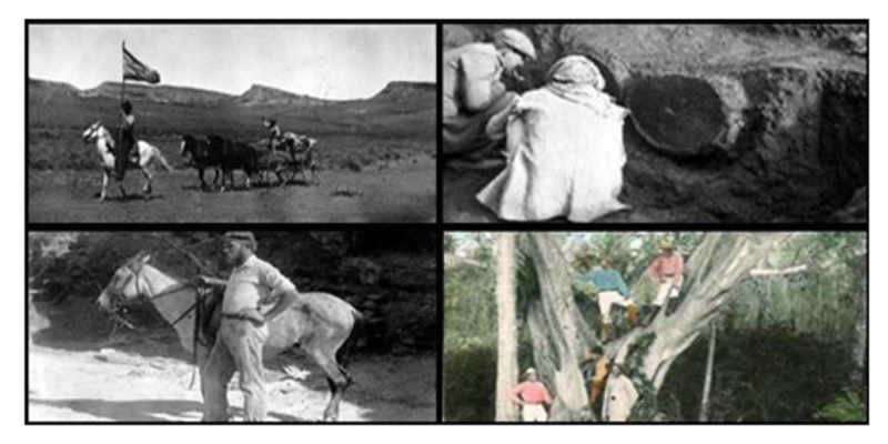 A composite image of four photos from past museum expeditions.