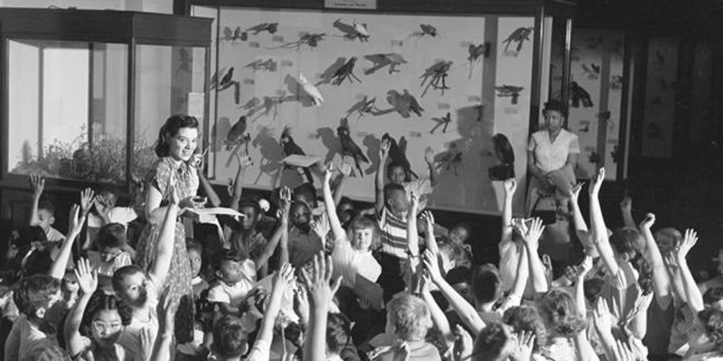 In an archival photograph, an educator stands in front of a group of students with a display case full of bird specimens behind her. Many of the students raise their hands.