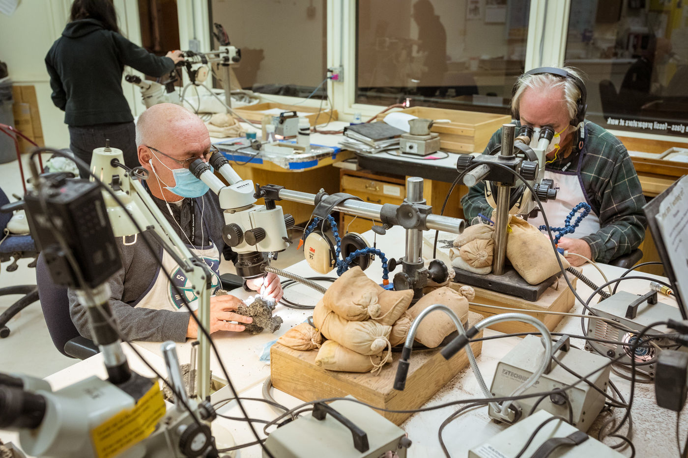 Two volunteers sit at a table and look into microscopes while they carve away at fossils. A woman in the background handles another microscope.