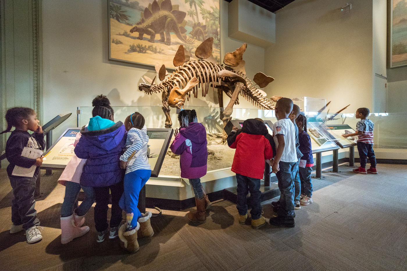 A group of young students gather around a stegosaurus fossil to read panels and look closely at the specimen. A mural of a stegosaurus hangs behind the fossil.