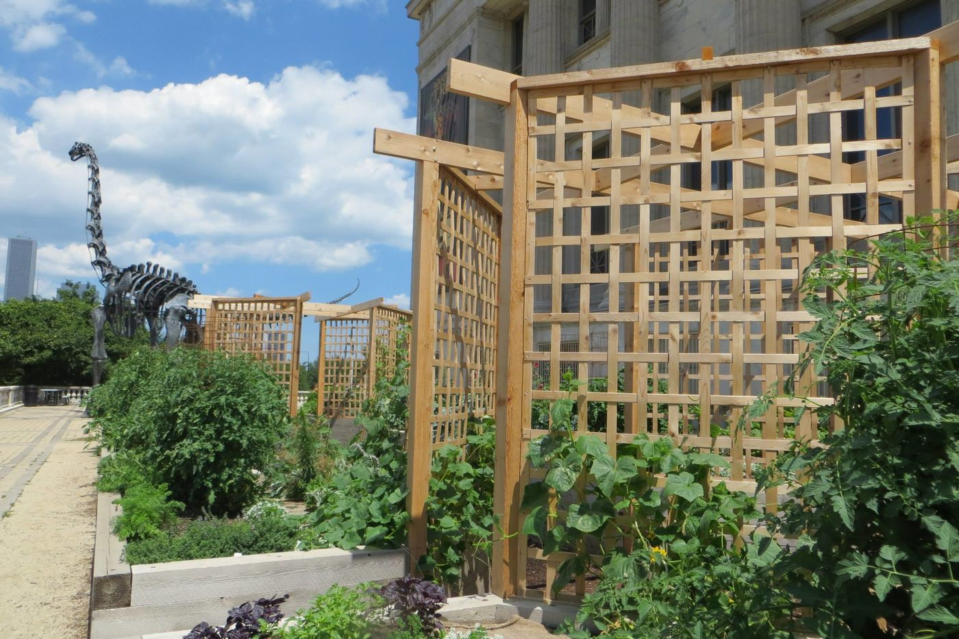 The Garden Is Made Possible By A Partnership Between The Field Museum,  Jewell Events Catering And The Peterson Garden Project.