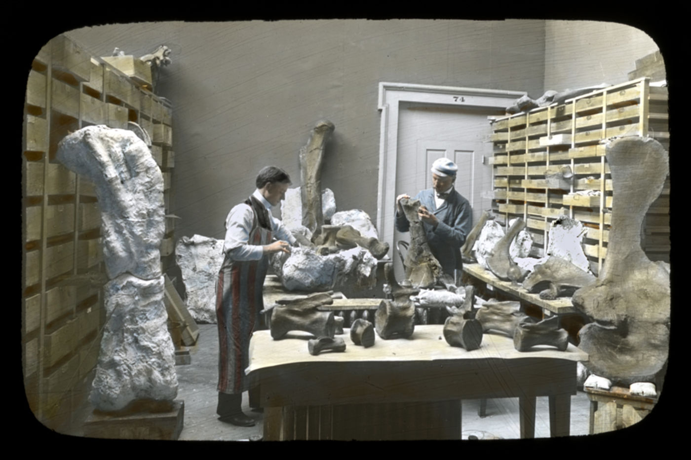 Two men stand at a table covered in large bones, both seemingly unpacking bones. Two especially large leg bones are propped up in the foreground. There are shelves lining both sides of the room.