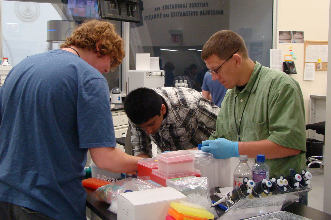 High school students in the DNA Residency Program work in the lab.