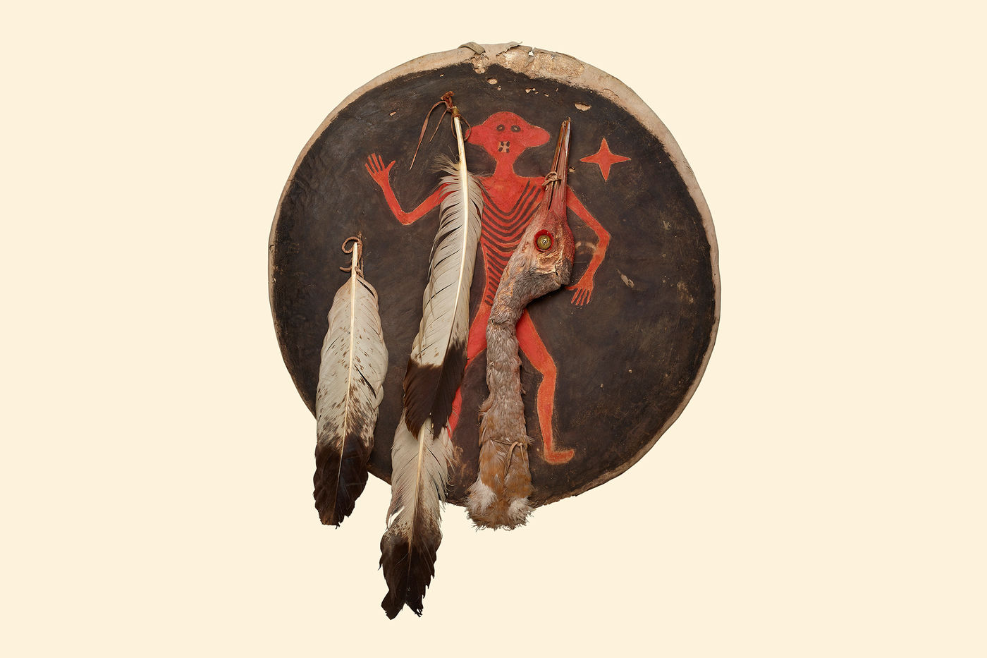 A round shield painted with a red figure in the center and a black background. Feathers and the head of a bird are tied onto the shield.