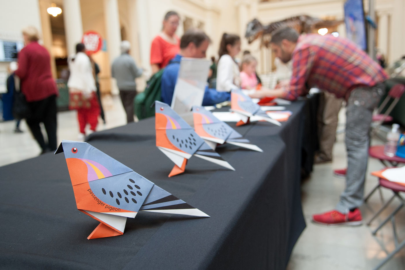 Four origami passenger pigeons rest on a table. In the background a museum staff member helps a visitor make one.
