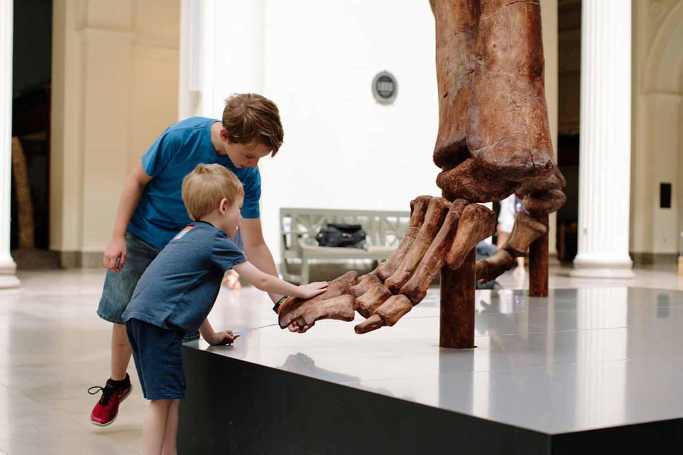 Two young visitors reach down to touch the foot of Máximo, a cast of the largest dinosaur ever discovered. The foot is raised on a black platform and the two visitors learn forward to touch the front of the foot.