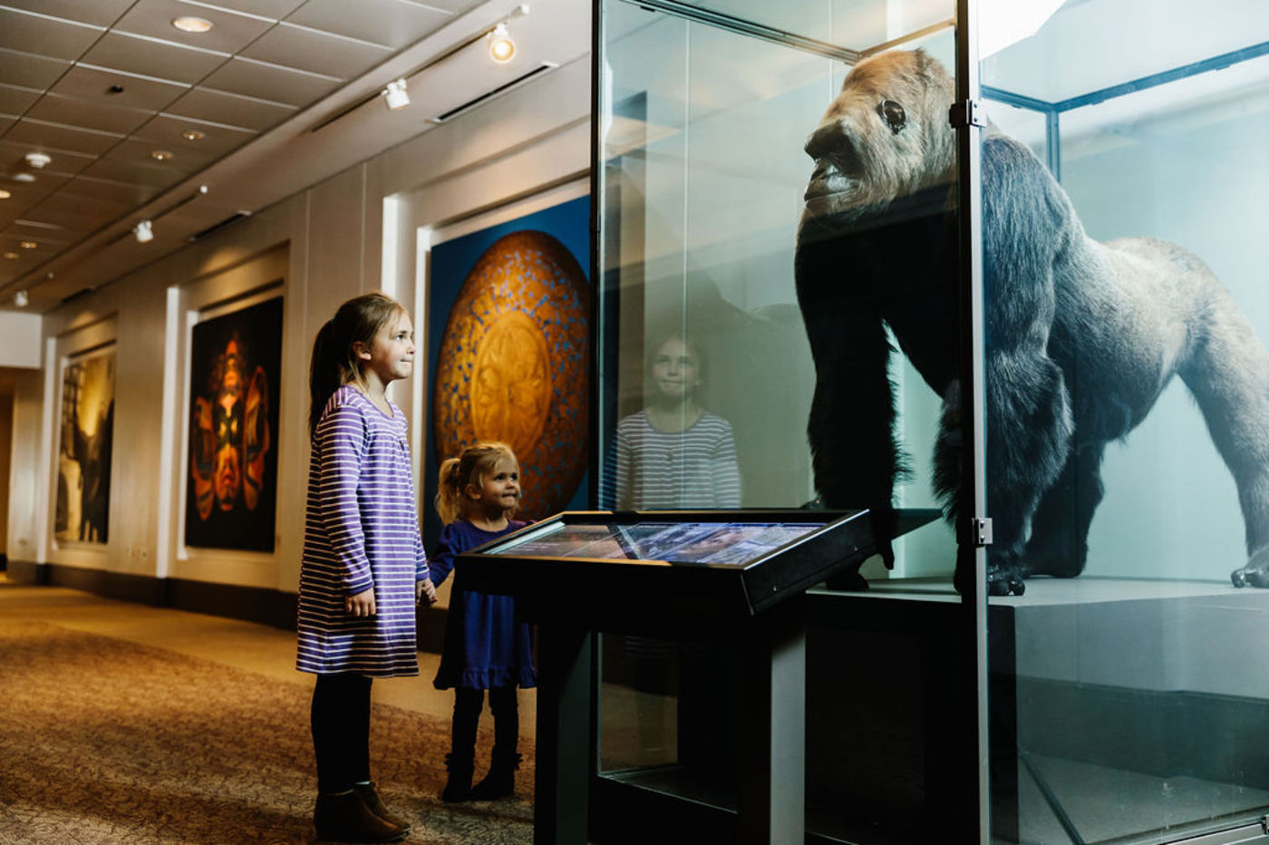 Two young girls look up at a taxidermied gorilla in a glass display case. The gorilla's head is angled such that it appears to be making eye contact with the children. A digital rail, a screen on a stand, is positioned in front of the case. In the background, large-scale photographs of objects are affixed to the wall.