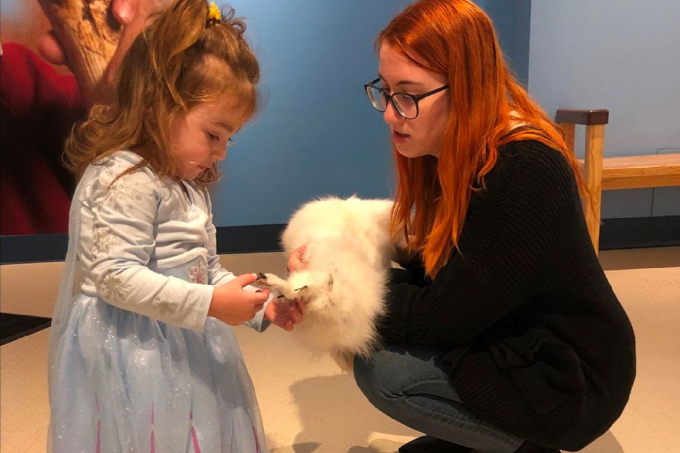 An educator holds an animal pelt up to a young visitor to touch. The visitor wears a blue costume dress and holds the end of the pelt for closer inspection.
