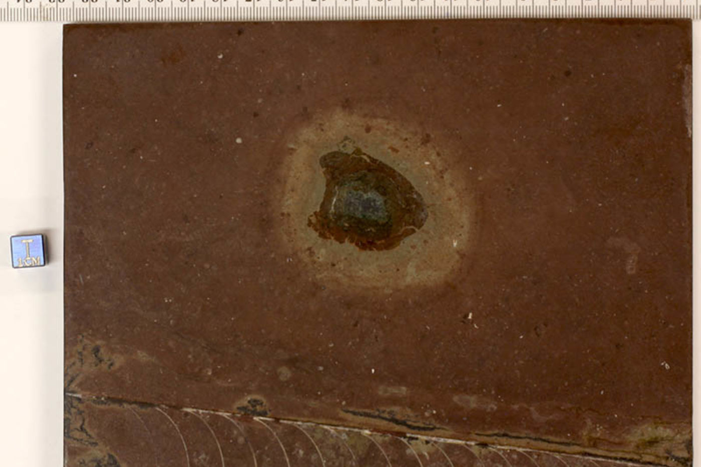 A square piece of red stone with a dark imprint in the middle and a striped impression along the bottom