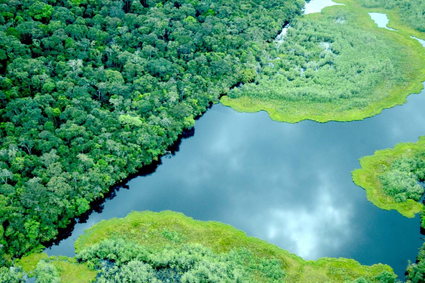 An aerial view of a landscape with a winding river and bright green trees.